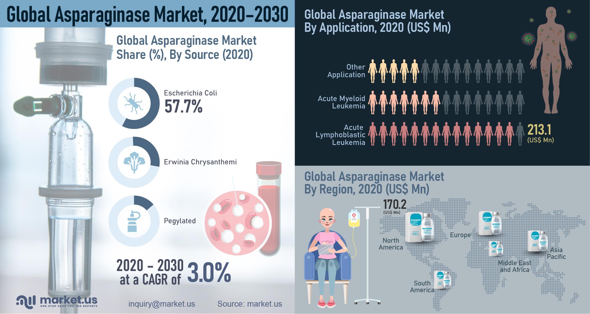 Global Asparaginase Market Infographics